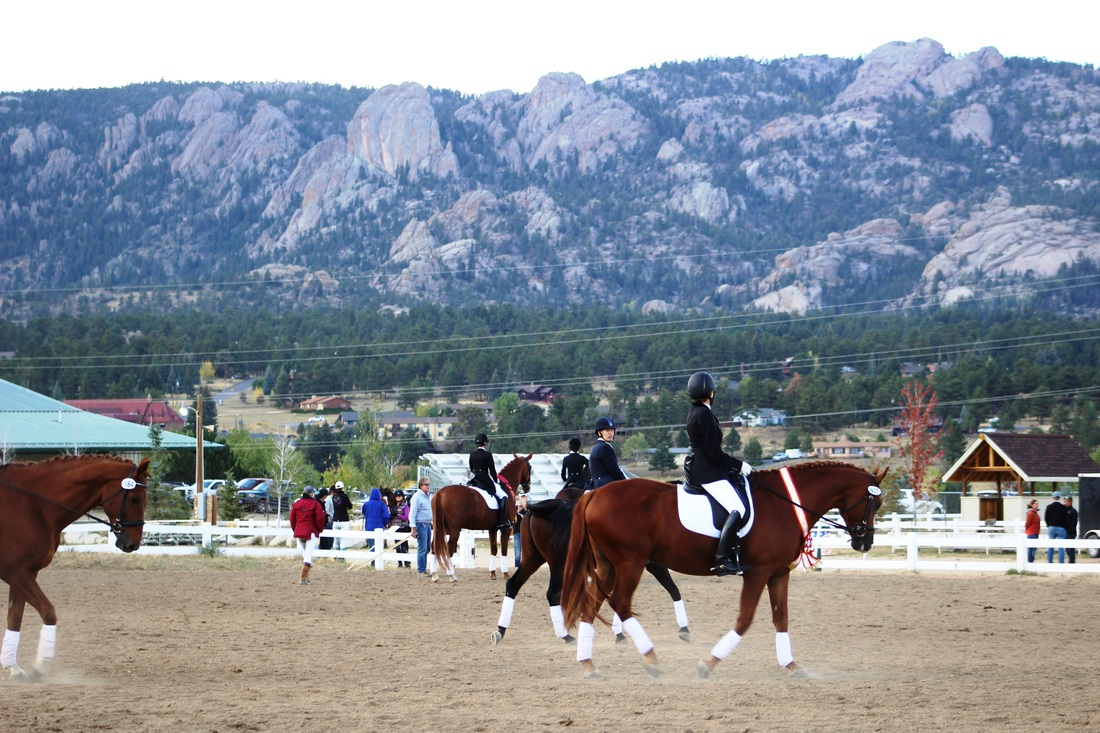 Equine Facilities - Estes Park Events Complex